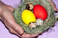 Easter egg in the hands of an elderly person Royalty Free Stock Images