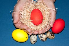 Easter egg in the hands of an elderly person. Royalty Free Stock Photo