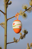 Easter egg hanging on pussy-willow branch. Stock Images