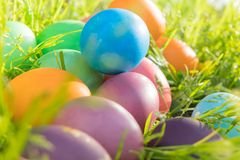 Easter egg ! happy colorful Easter sunday hunt holiday decorations Easter concept backgrounds with copy space Stock Images