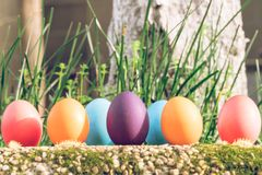 Easter egg ! happy colorful Easter sunday hunt holiday decorations Easter concept backgrounds with copy space. Gain & Noise filter applied Stock Image