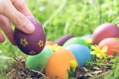 Easter egg ! happy colorful Easter sunday hunt holiday decorations Easter concept backgrounds with copy space Stock Photo