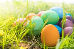 Easter egg ! happy colorful Easter sunday hunt holiday decorations Easter concept backgrounds with copy space Stock Photos