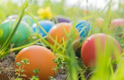 Easter egg ! happy colorful Easter sunday hunt holiday decorations Easter concept backgrounds with copy space Stock Photography