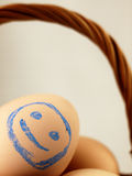 Easter egg with a happy face in the basket. Royalty Free Stock Images