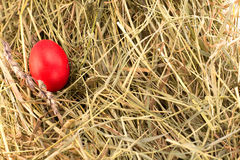Easter egg on the hay. One painted red easter egg on the hay Stock Photography