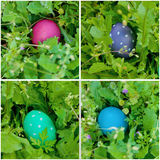 Easter egg hung collage Royalty Free Stock Photography