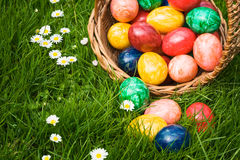 Easter egg Hunt Stock Image