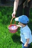 Easter Egg Hunt. Little boy during Easter egg hunt Royalty Free Stock Photos
