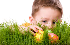 Easter egg hunt. Cute boy searching for easter eggs hidden in fresh green grass. Isolated on white background Royalty Free Stock Photography