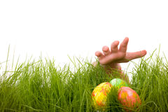 Easter egg hunt Royalty Free Stock Image