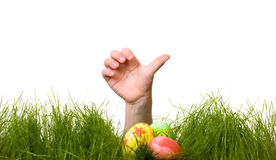 Easter egg hunt Stock Photos