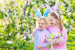 Easter egg hunt. Kids with bunny ears and basket. Kids with bunny ears on Easter egg hunt in blooming cherry blossom garden. Little boy and girl with spring royalty free stock images