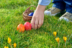 Easter egg Hunt on a Sunny Easter morning Royalty Free Stock Photos