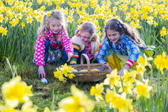Easter Egg Hunting Stock Images