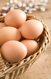 Easter Egg In A Basket Royalty Free Stock Image