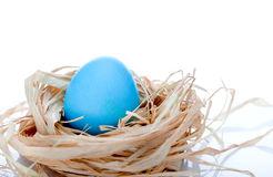 Free Easter Egg In A Nest Stock Images - 18534894