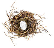 Free Easter Egg In Birds Nest Royalty Free Stock Images - 65167369