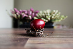 Free Easter Egg In The Nest Royalty Free Stock Images - 89956319