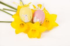 Easter egg in Jonquil primrose. Easter egg in spring flowers with background royalty free stock photography