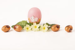 Easter egg in Jonquil primrose. Easter egg in spring flowers with background royalty free stock photo