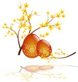 Easter egg with laburnum. Illustration of orange easter eggs with twig of laburnum Stock Photography