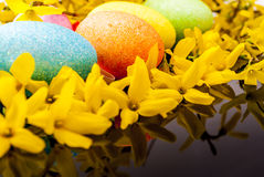 Easter egg and laburnum. Easter egg and yellow laburnum on black reflex background royalty free stock photo