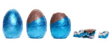 Easter Egg Lifecycle Royalty Free Stock Photo