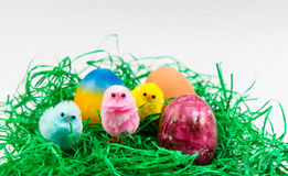 Easter Egg and little chicks Royalty Free Stock Photo
