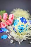 Easter egg in the little nest Royalty Free Stock Photo
