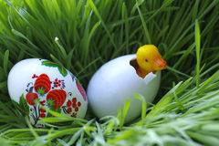 Easter egg and little toy duckling in the grass Stock Photos