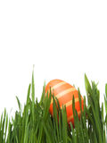 Easter egg in meadow. An easter egg in meadow Stock Images