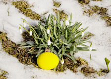 Easter egg near snowflakes Royalty Free Stock Photos