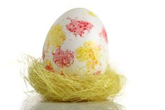 Easter egg in nest Stock Images