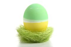 Easter egg in nest Royalty Free Stock Image