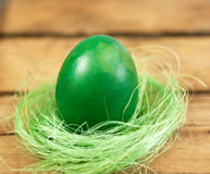 Easter egg and nest. Green painted easter egg in a little bird nest Stock Photography