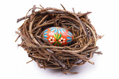Easter egg in nest Royalty Free Stock Images
