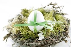 Easter egg in the nest Stock Photography