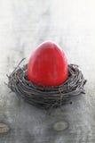 Easter egg in the nest Stock Image