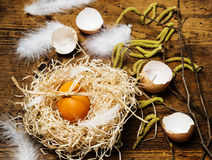 Easter egg in a nest Royalty Free Stock Photography