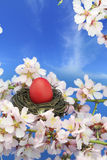 Easter egg on the tree Stock Photography