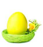 Easter egg in nest Stock Image