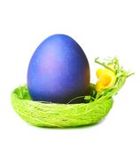 Easter egg in nest Stock Photography