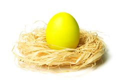 Easter egg in nest Royalty Free Stock Photo