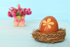 Easter egg in the nest Stock Images