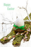 Easter egg in nest and branch on white wooden table Stock Photography