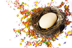 Easter egg in the nest Royalty Free Stock Images