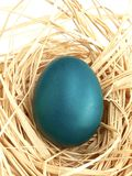 Easter egg painted blue homemade Stock Photography