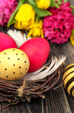 Easter egg nest with flowers on rustic wooden background Royalty Free Stock Image
