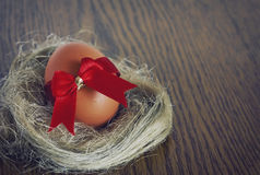 Easter egg in the nest Royalty Free Stock Photography